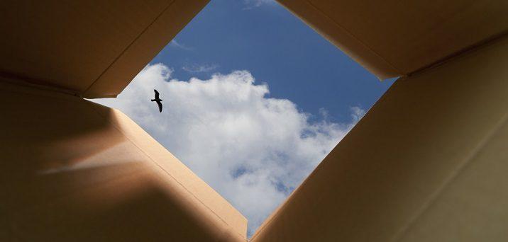 Box to Sky